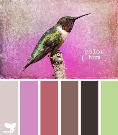 ColorHum625