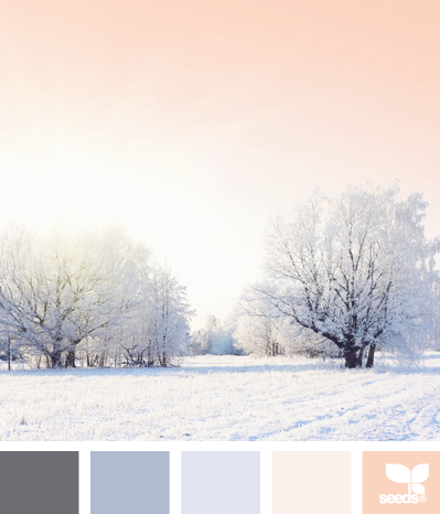 winter colour inspiration