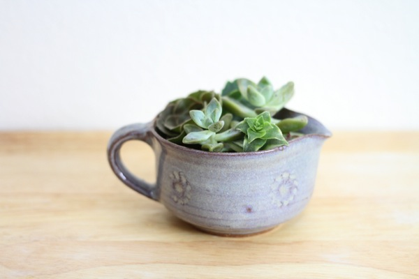 Office Plante Ideas_Succulents_1