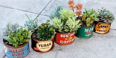 DIY Office Plants Succulents_old tins